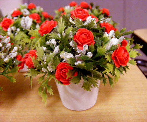 Ухаживаем правильно за домашними розами