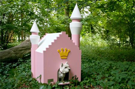 Собачьи дворцы