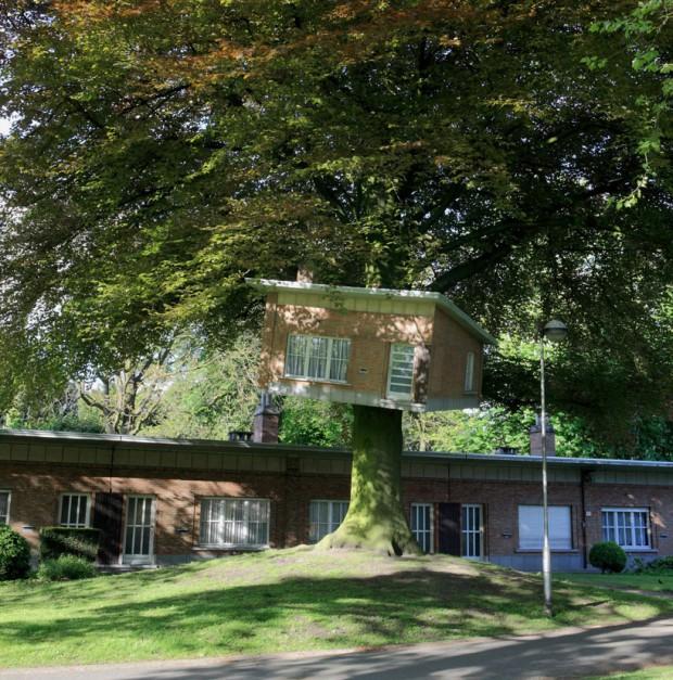 Скошенный домик на дереве