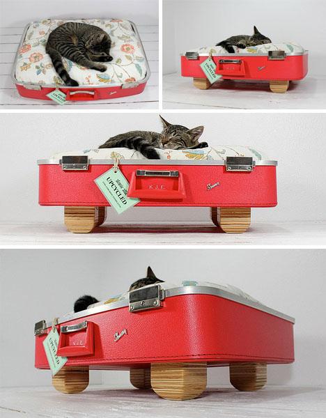 Удобные места для сна для кошек