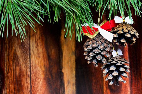 От новогоднего декора раньше баночки варенья, неужели Что позволяется сделать из  обыкновенных шишек