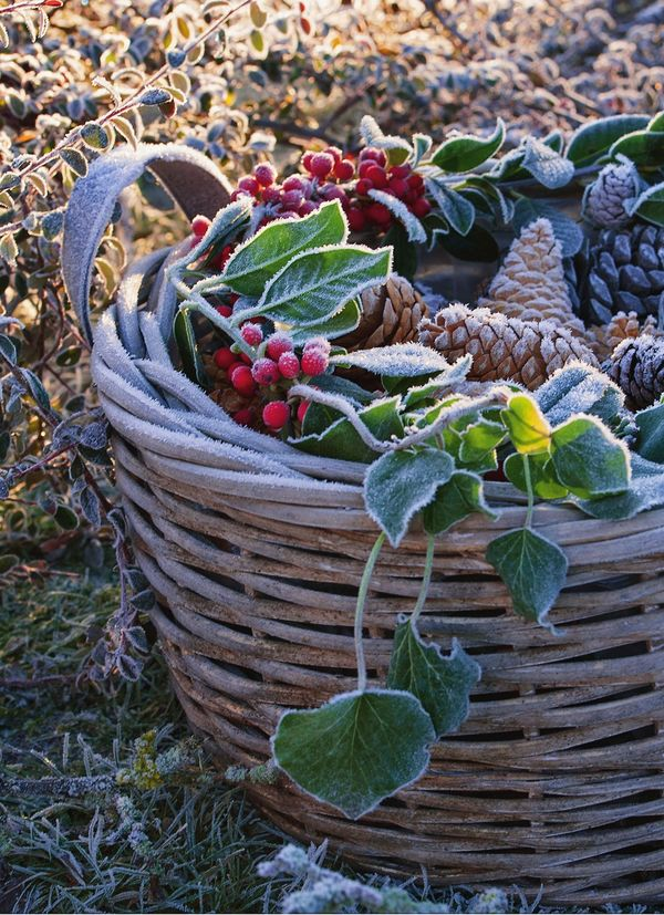 Новый годочек приходит во сад: идеи декора