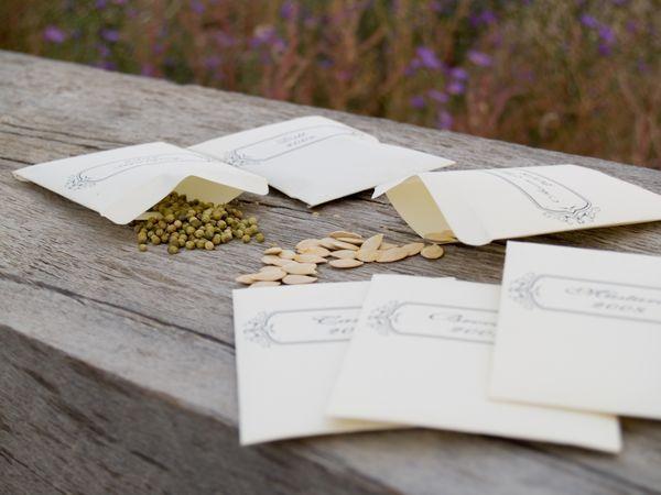 7 важнейших правил выбора семян