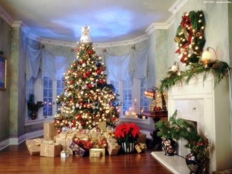 Ставим елку дома объединение фэн-шуй